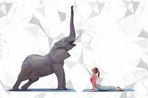 Do yoga with elephants!