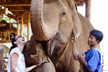 Special Offer from Anantara Golden Triangle Elephant Camp & Resort